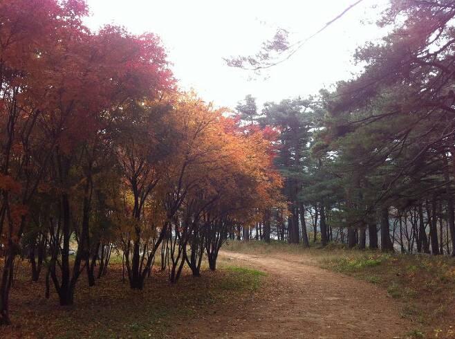 출처: 척산온천 휴양촌