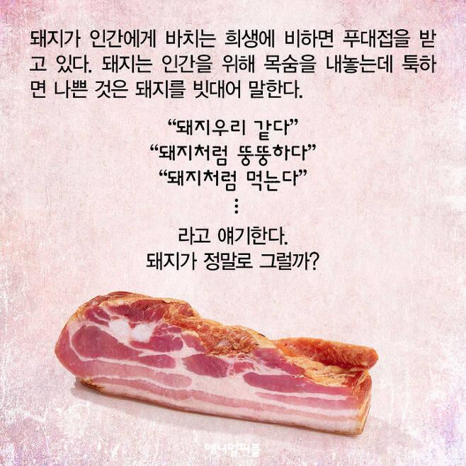 출처: <애니멀피플>