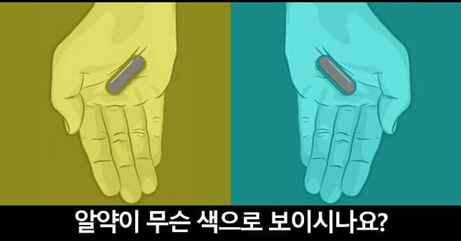 출처: 알약의 색에 따른 스트레스 지수는?