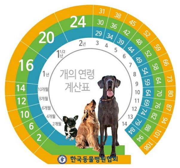 출처: 한국동물병원협회