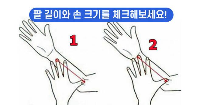 출처: 자신의 팔길이를 체크해보세요!