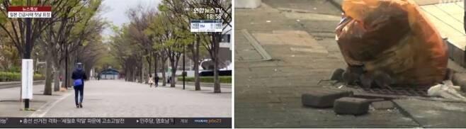 출처: 연합뉴스TV·NHK 방송화면 캡처