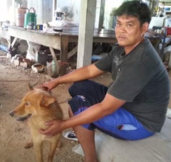 출처: https://wamiz.com/chiens/actu/un-chien-sauve-la-vie-d-un-bebe-abandonne-dans-une-poubelle-6470.html