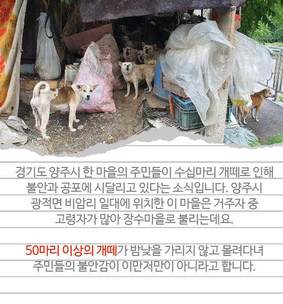 출처: 사진=뉴스1