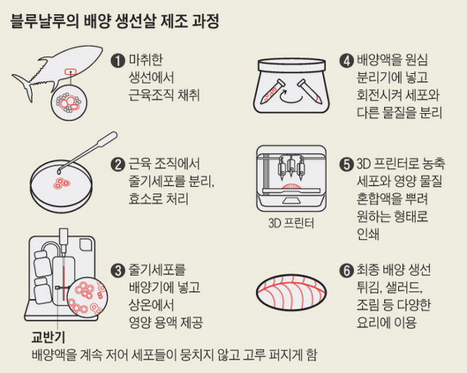 출처: 조선DB