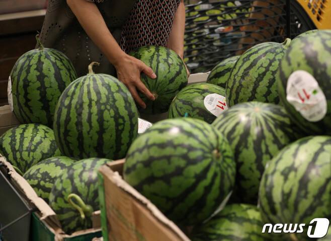 서울의 한 대형마트에서 시민들이 수박을 고르고 있다./사진= 뉴스1