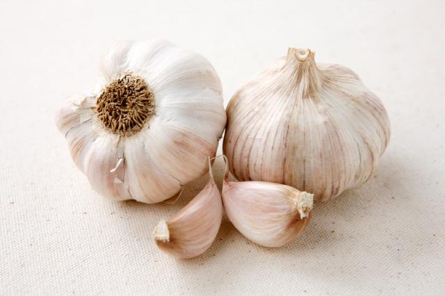 마늘은 항암, 항염 효과가 뛰어나 매일 먹어도 좋은 식품이다./사진=클립아트코리아