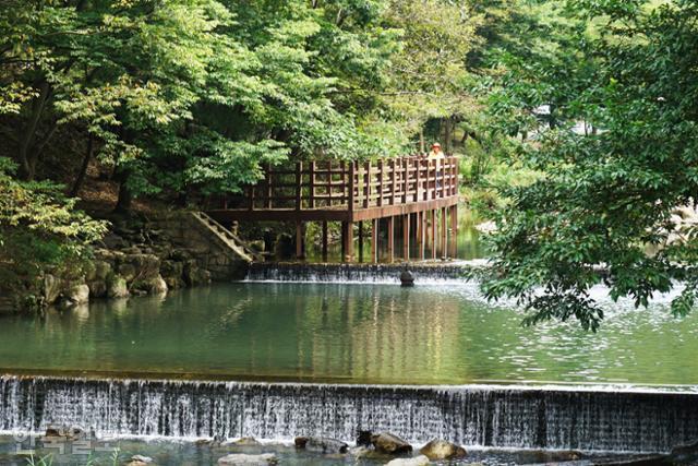 완주 고산면의 고산자연휴양림. 인근 대아수목원과 함께 숲 산책을 즐길 수 있는 휴양시설이다.