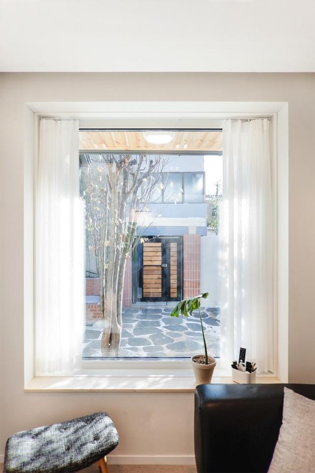 거실 소파에서 내다보이는 창 밖의 전경. 40년 된 모과나무가 보인다. 일상공간 제공