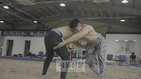 증평군청 인삼씨름단 소속 손희찬 선수가 단국대에서 훈련차 온 선수와 연습하는 모습