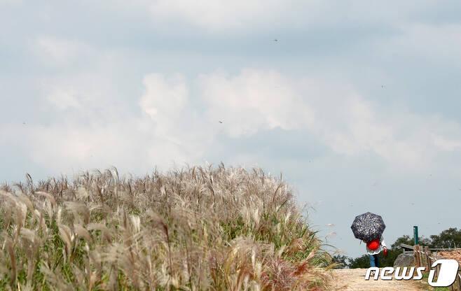 24일 오후 서울 마포구 하늘공원을 찾은 한 시민이 양산을 쓰고 나들이를 즐기고 있다.2021.9.24/뉴스1 © News1 구윤성 기자