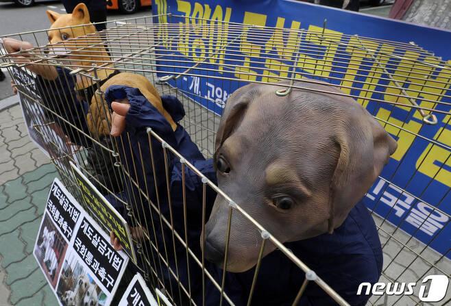 한국동물보호연합 회원들이 지난 5월26일 오후 서울 여의도 국회 앞에서 개도살 금지법 국회 통과 촉구 기자회견을 마친 뒤 철장 안에서 동물가면을 쓴 사람들의 피켓팅 모습을 담은 퍼포먼스를 하고 있다. 2021.5.26/뉴스1 © News1 이동해 기자