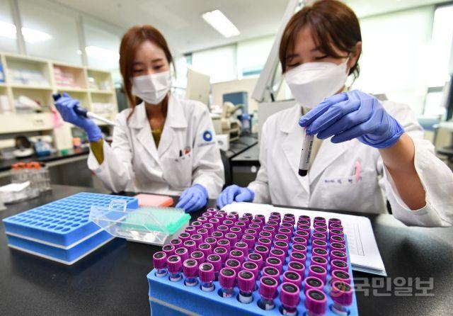 지난달 30일 경기도 판교에 있는 분자진단 헬스케어 기업 랩지노믹스의 유전자형 검사실에서 연구원들이 조직적합항원 검사를 하고 있다. 조혈모세포 기증 희망자로 등록할 때 분석했던 유전자형이 최종적으로 일치하는지 검사하는 곳이다.