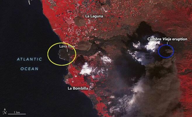 지난 10일 나사가 우주정거장에서 특수 카메라로 촬영했다며 공개한 라팔마섬 사진. 용암과 바다가 만나 새로 생긴 땅(노란 원)과 화산(파란 원)을 확인할 수 있다. /나사